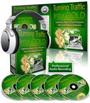 Turning Traffic Into Gold - PLR Audio & eBook