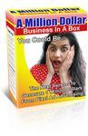 A Million Dollar Business in a Box (PLR)