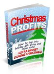 Christmas Profits (PLR)