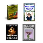 Public Domain 4 Pack (PLR)