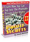 Profit Secrets - Vol. 2
