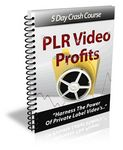 PLR Video Profits - eCourse (PLR)