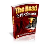Road to PLR Success